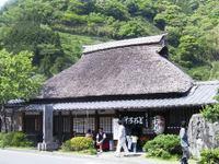 0505shizuoka_004