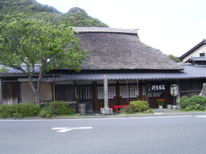 0505shizuoka_016