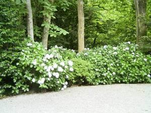 20075_6_068