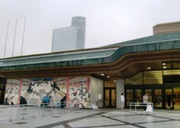 20095_011