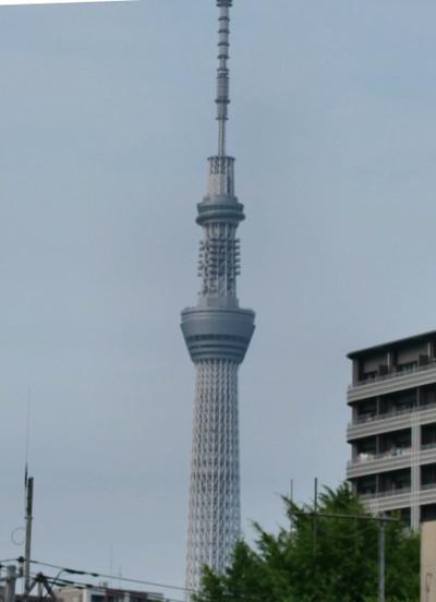 2012_007