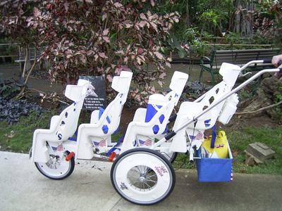 zoo-cart