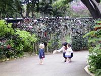 zoo-deai2