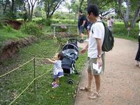zoo-mimi-jiji