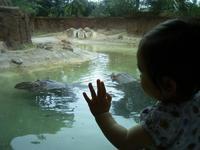 zoo-mimi-kaba
